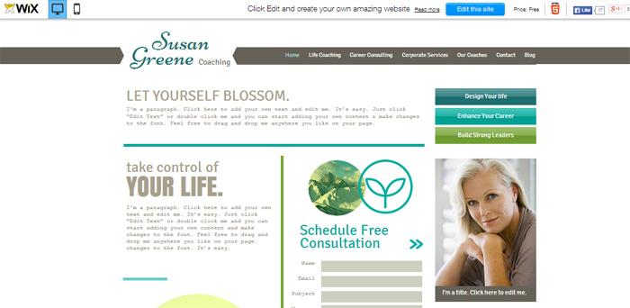 Mijn domein: voorbeeld wix website