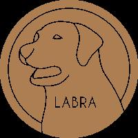 Labra Finance