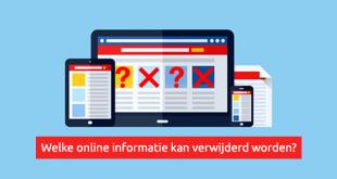 Welke informatie kan verwijderd worden van het internet